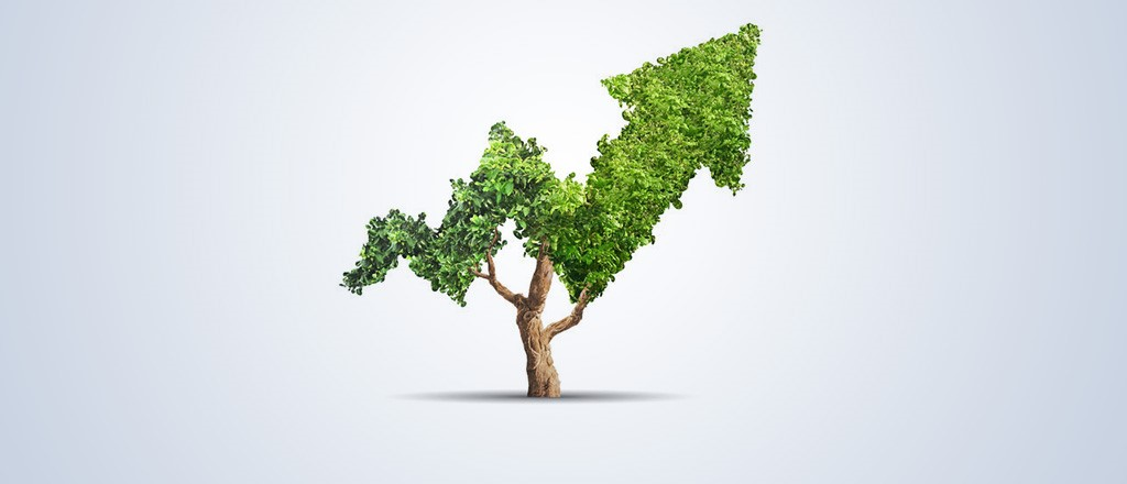 Investment Banking and Sustainability, Recent College Graduate Perspective with William Patterson